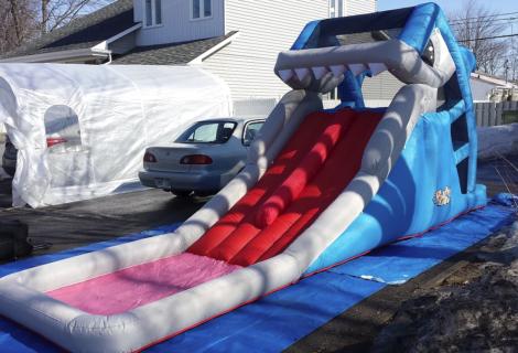 Le Requin / 80$/jour +tx.